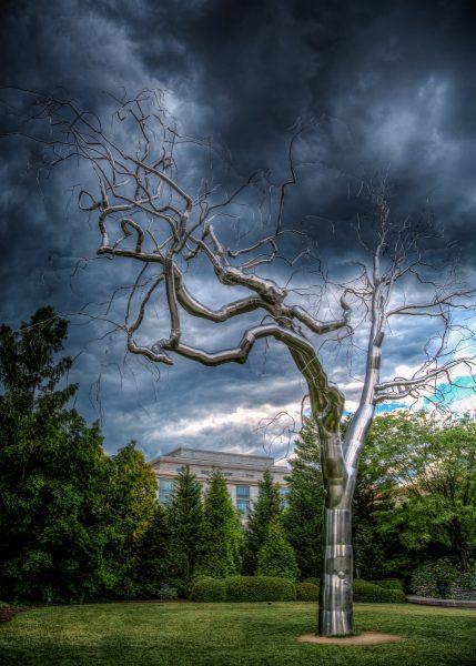 Stormy Metal Tree